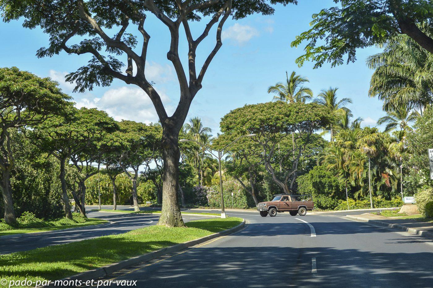 Maui - côte sud ouest