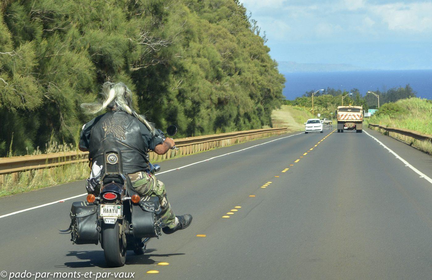 Maui - sur la route