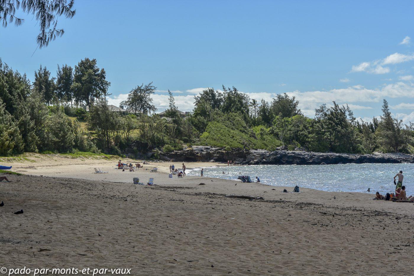 Maui - DT Fleming beach