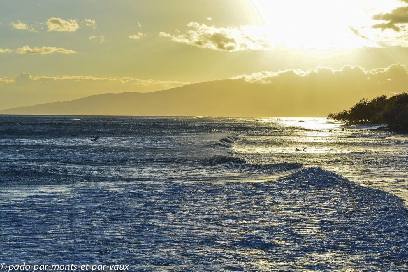 Maui - Malaalea
