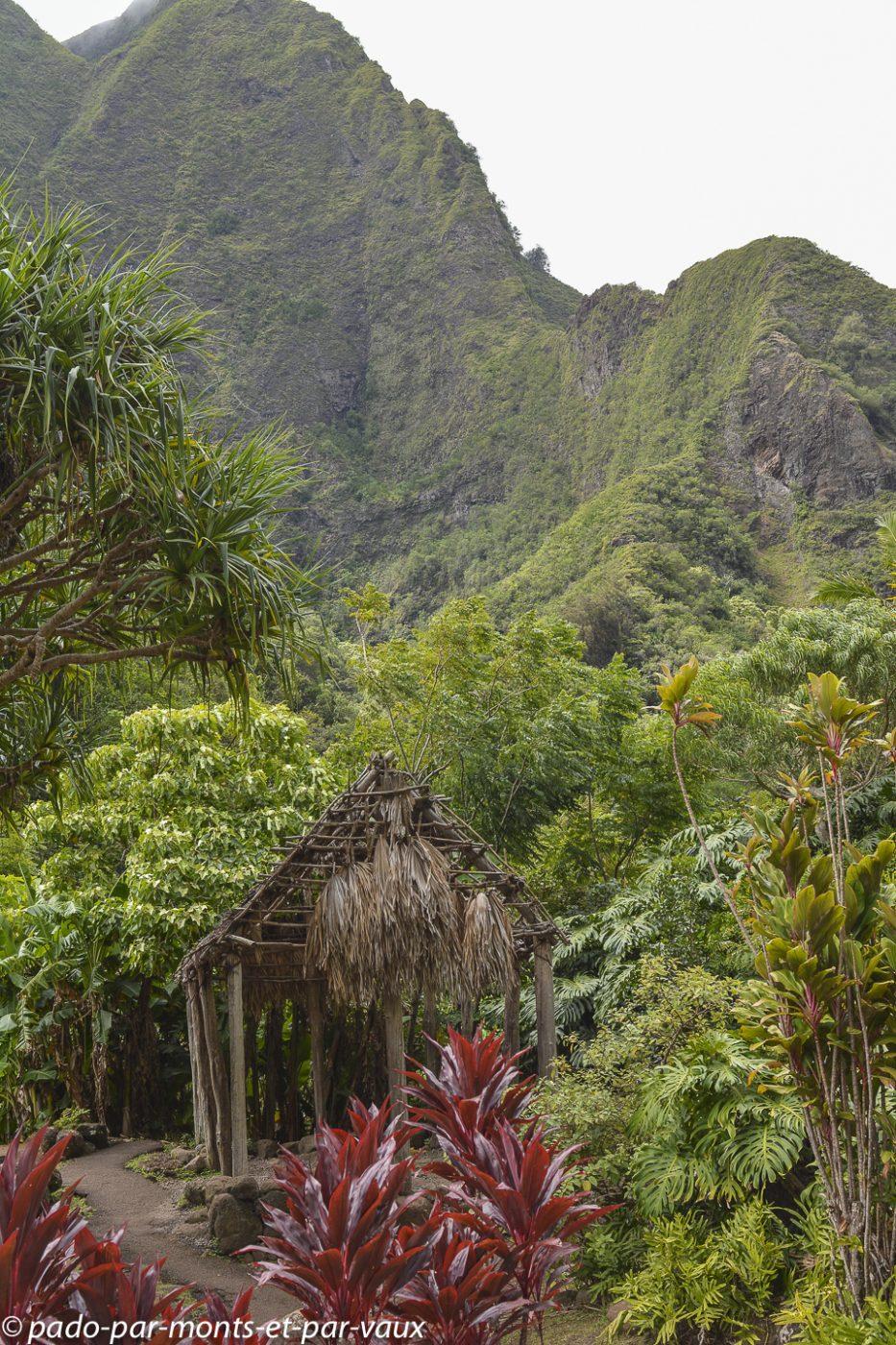 Maui - Iao Valley state park