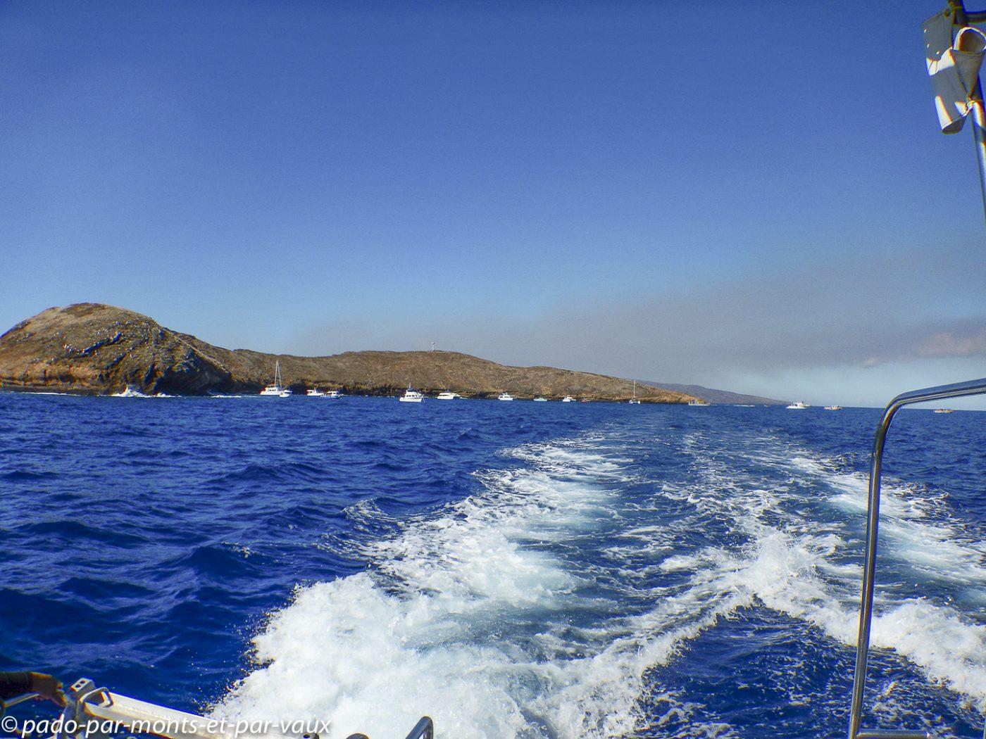 Maui -  Molokini  crater