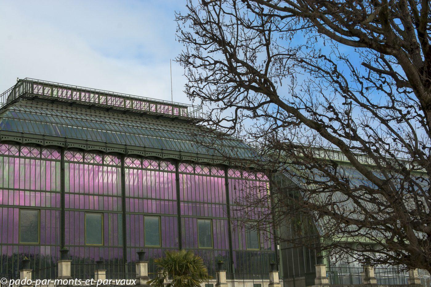 Jardin des plantes - Paris -