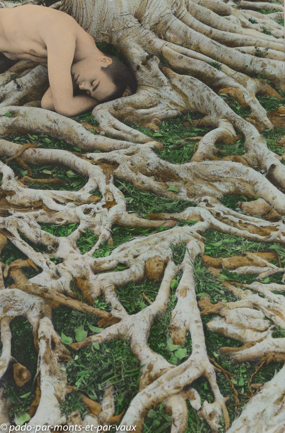 Venise - Palais Grassi - Youssef Nabil