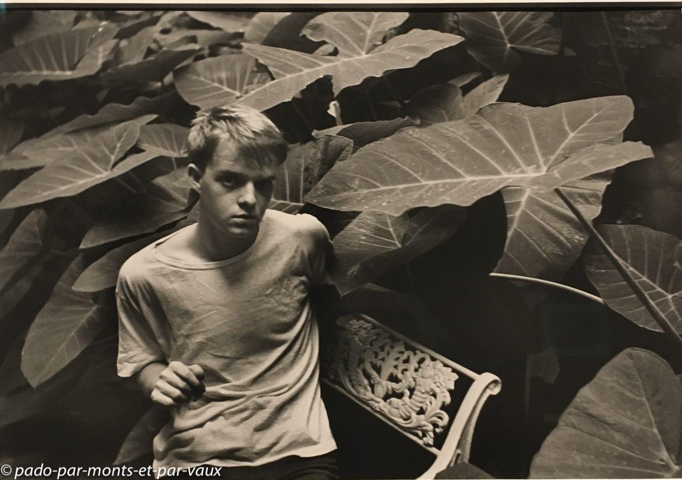 Cartier Bresson - Truman Capote 1946