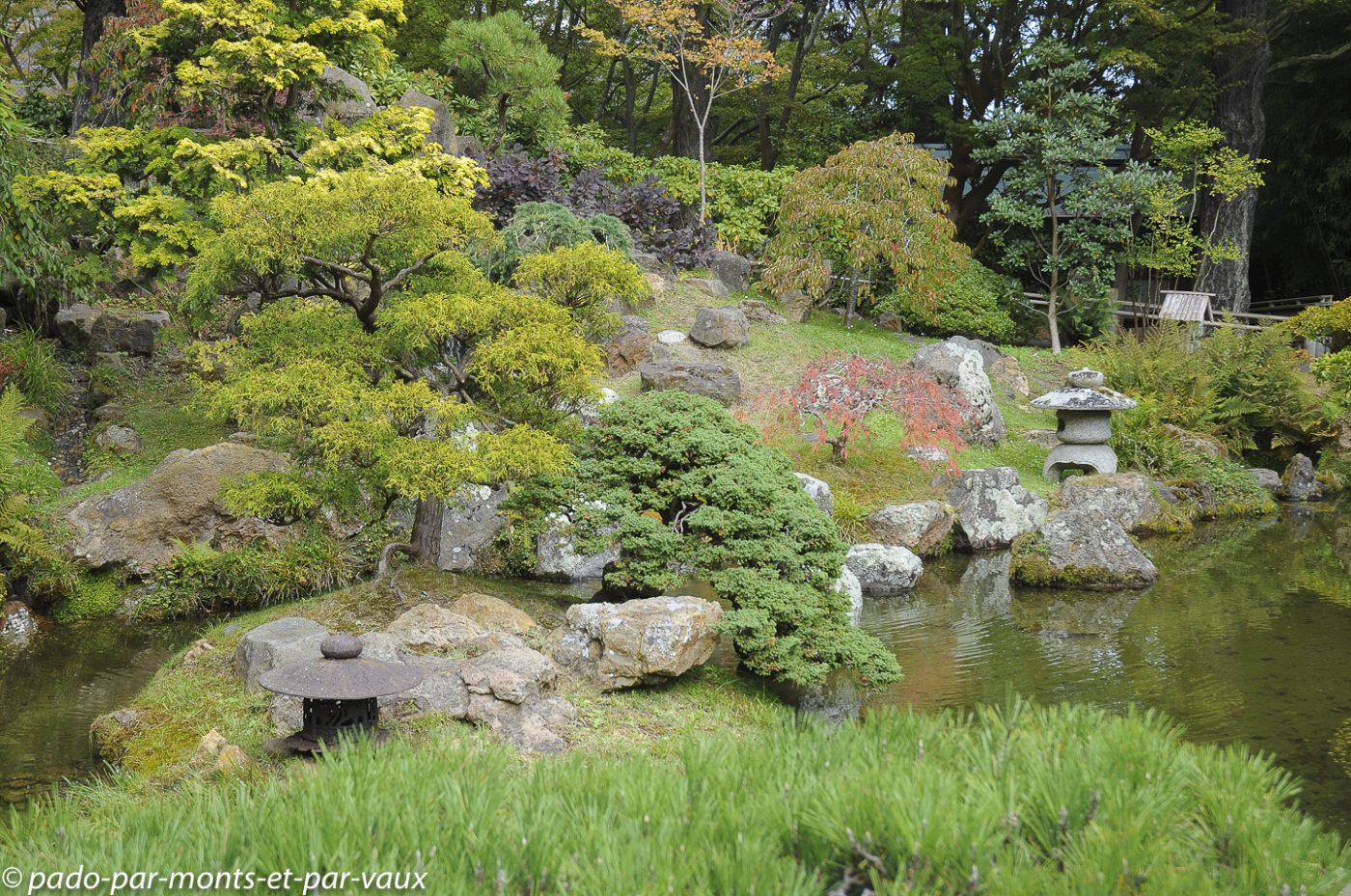 2009 Japanese tea garden