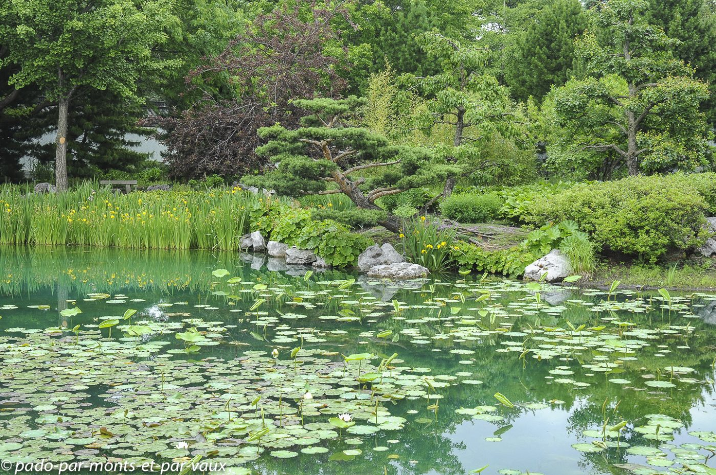2010-Jardin botanique Montreal