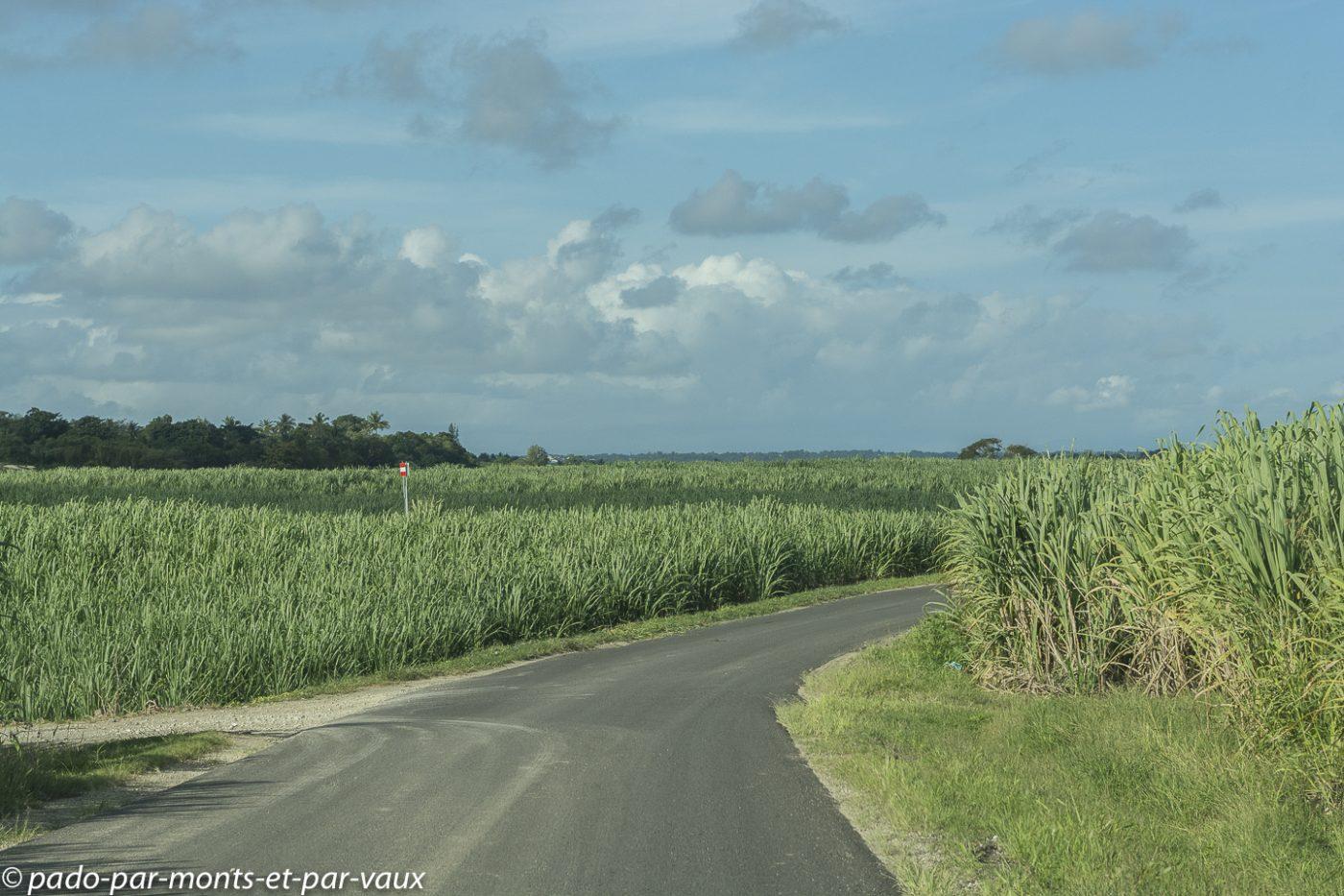 2021- Guadeloupe-Route vers Sainte-Anne