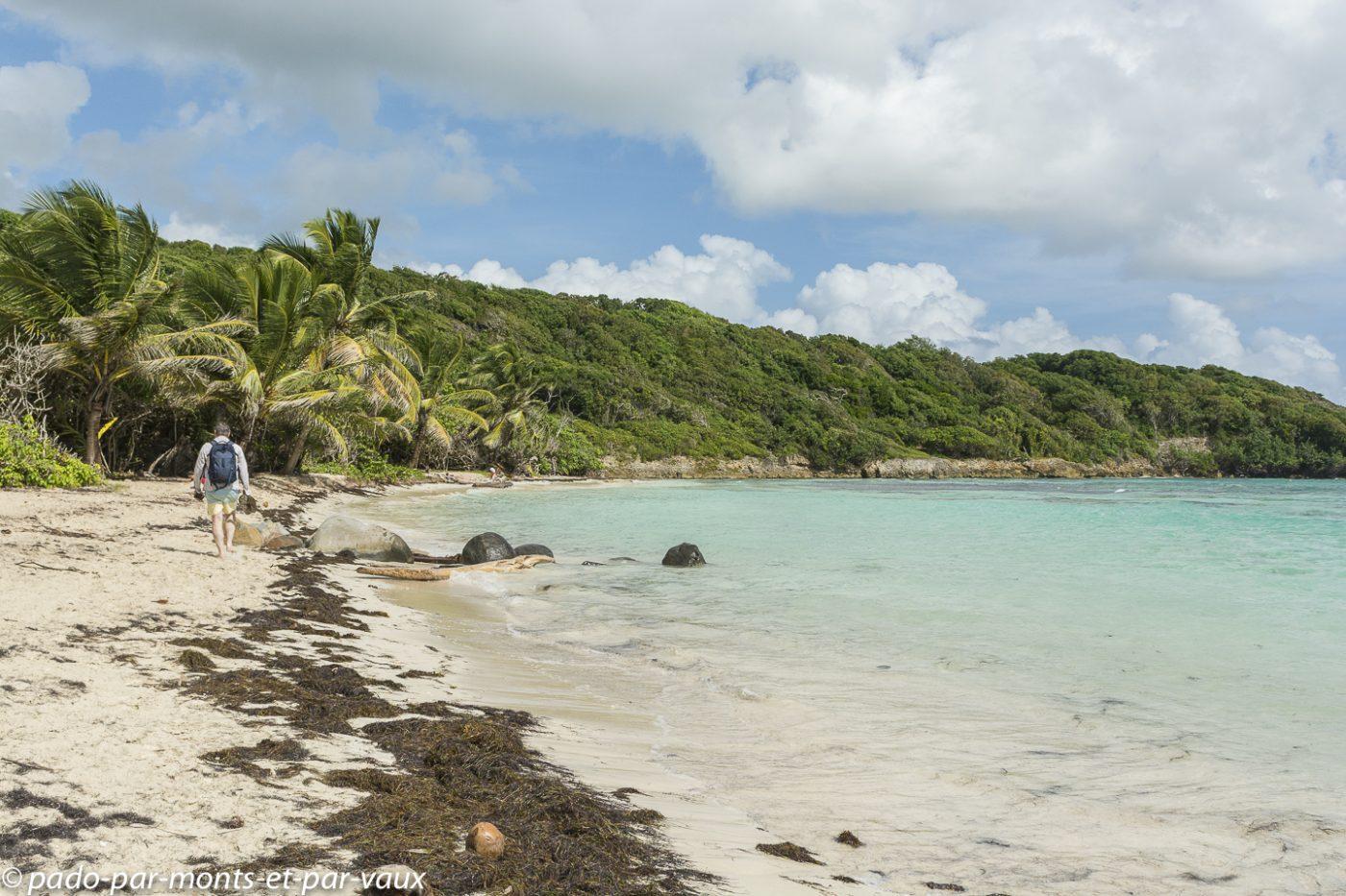 2021- Guadeloupe-Plage de Bois Jolan