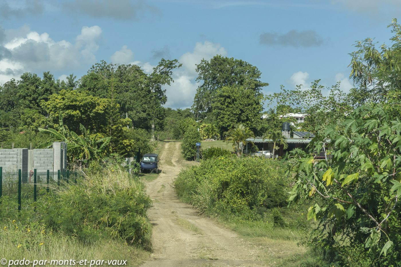 2021-Guadeloupe-Route vers Pointe des Chateaux