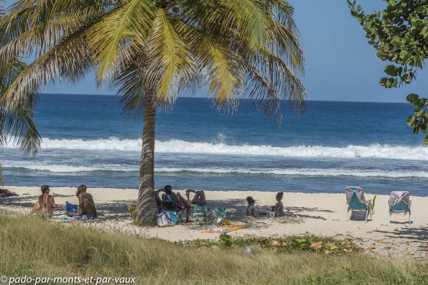 2021- Guadeloupe- Anse-Laborde