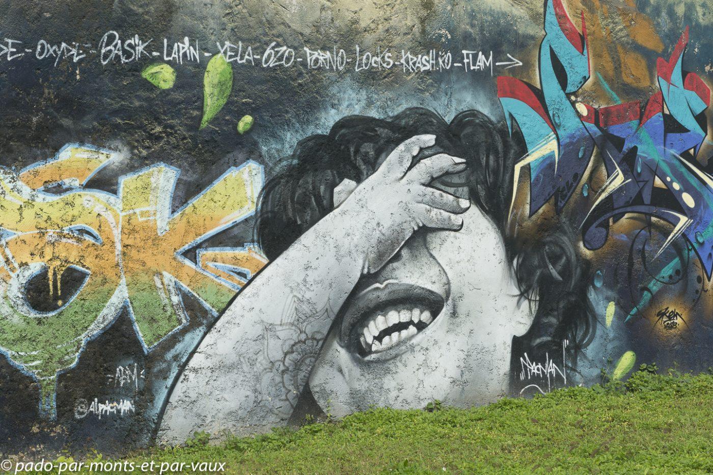 2021-Pointe-a-Pitre- street art