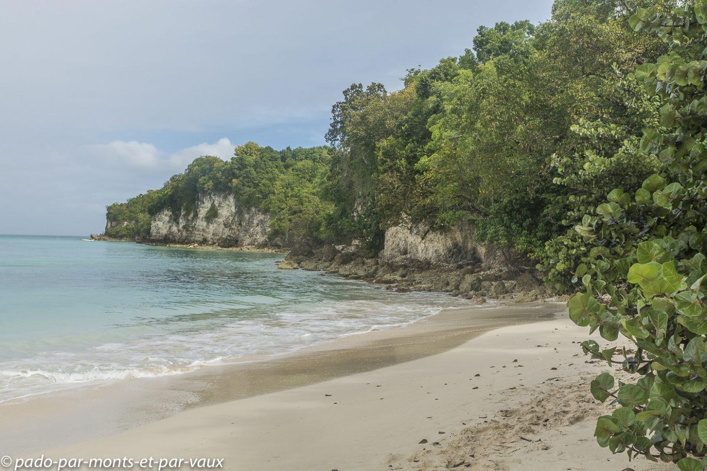 2021-Marie-Galante-Randonnée Anse du Vieux Fort