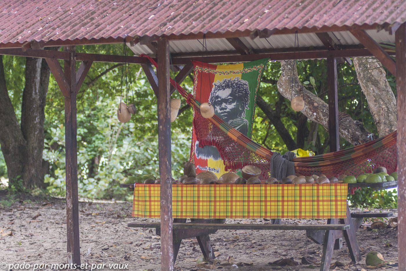2021- Marie-Galante- Marchand de noix de coco