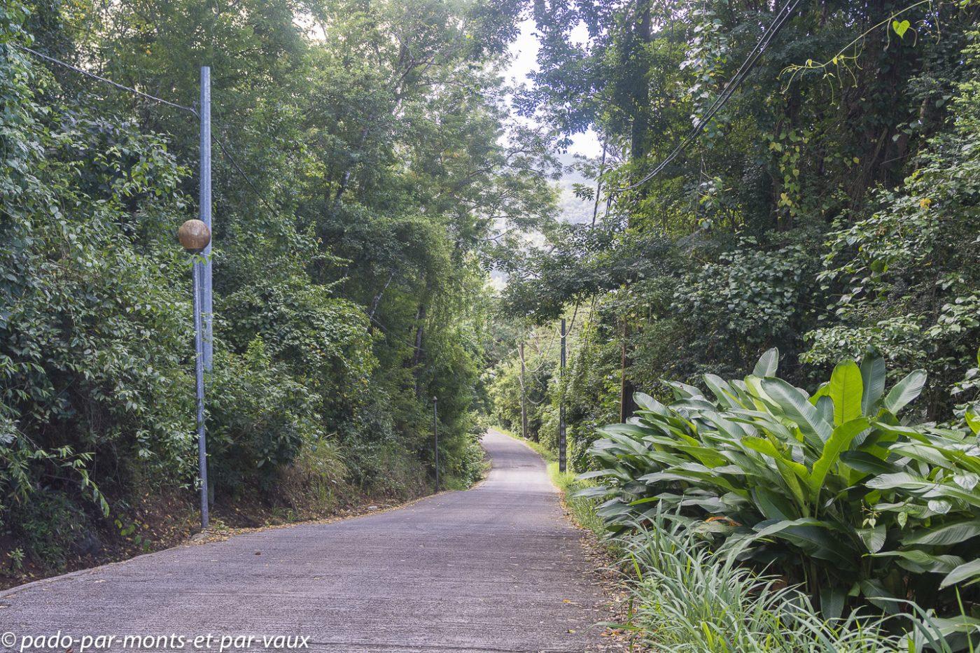 2021- Basse-Terre-Pointe Noire