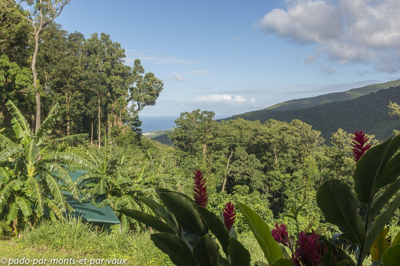 Guadeloupe - habitation La Manon