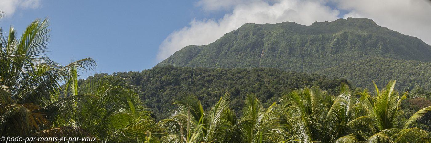 2021- Basse Terre-PN de Guadeloupe