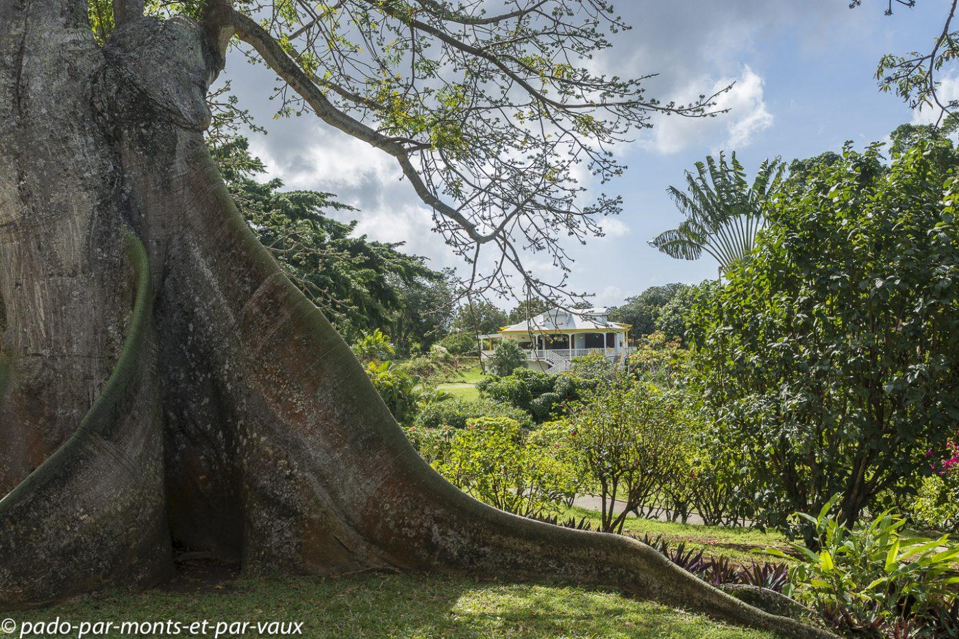 2021- Jardin Deshaie-Fromager