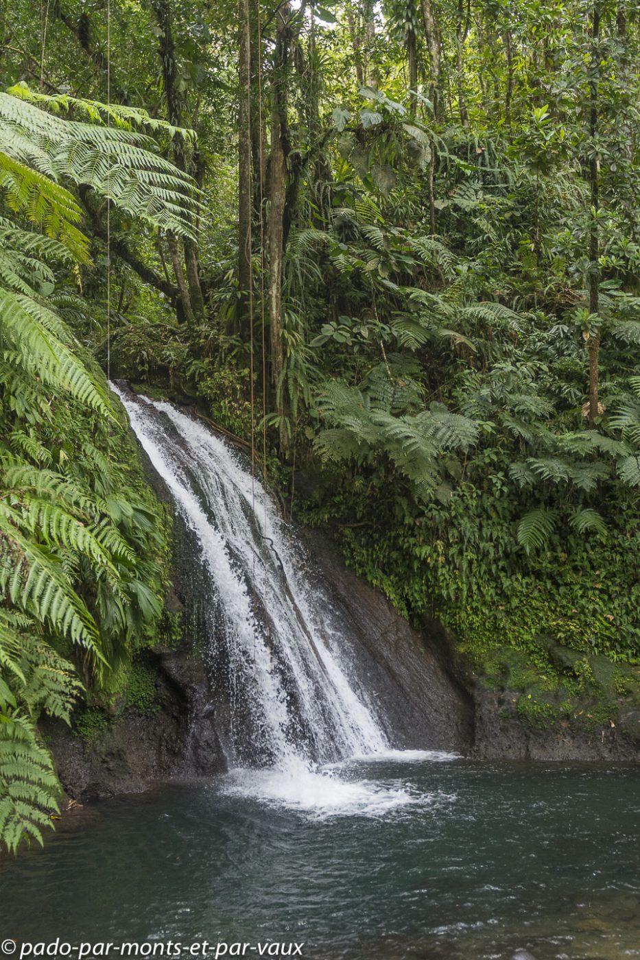 2021- Basse-Terre-Cascade Aux Ecrevisses