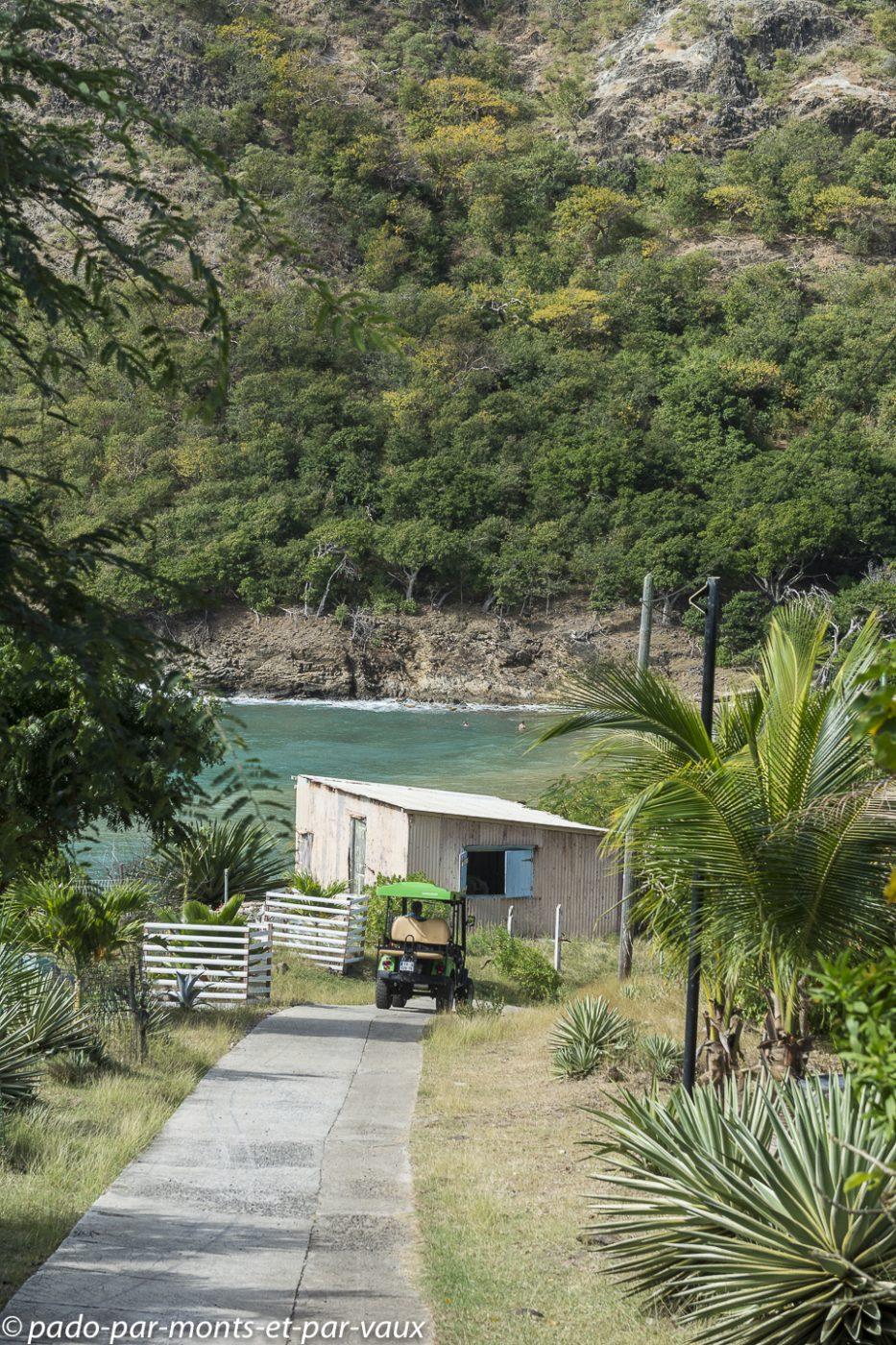 2021- Les-Saintes-Anse du Figuier
